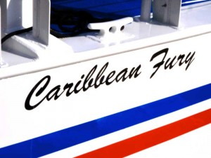 Fury's brand new catamaran
