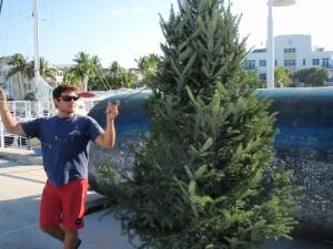 Shon trimming the tree.