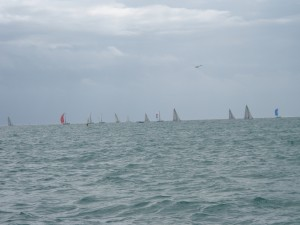 Harbor lined with racing yachts.