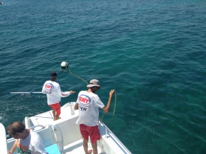 Anchoring at Wetern Sambo for Key West Snorkeling Trip