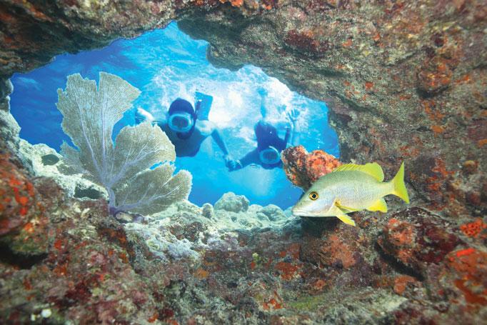 fury snorkeling trip