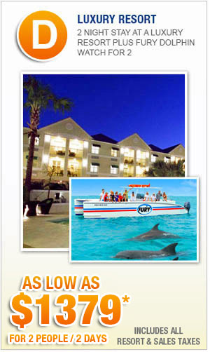 Key West Vacation Packages with Fury Dolphin Watch Tour