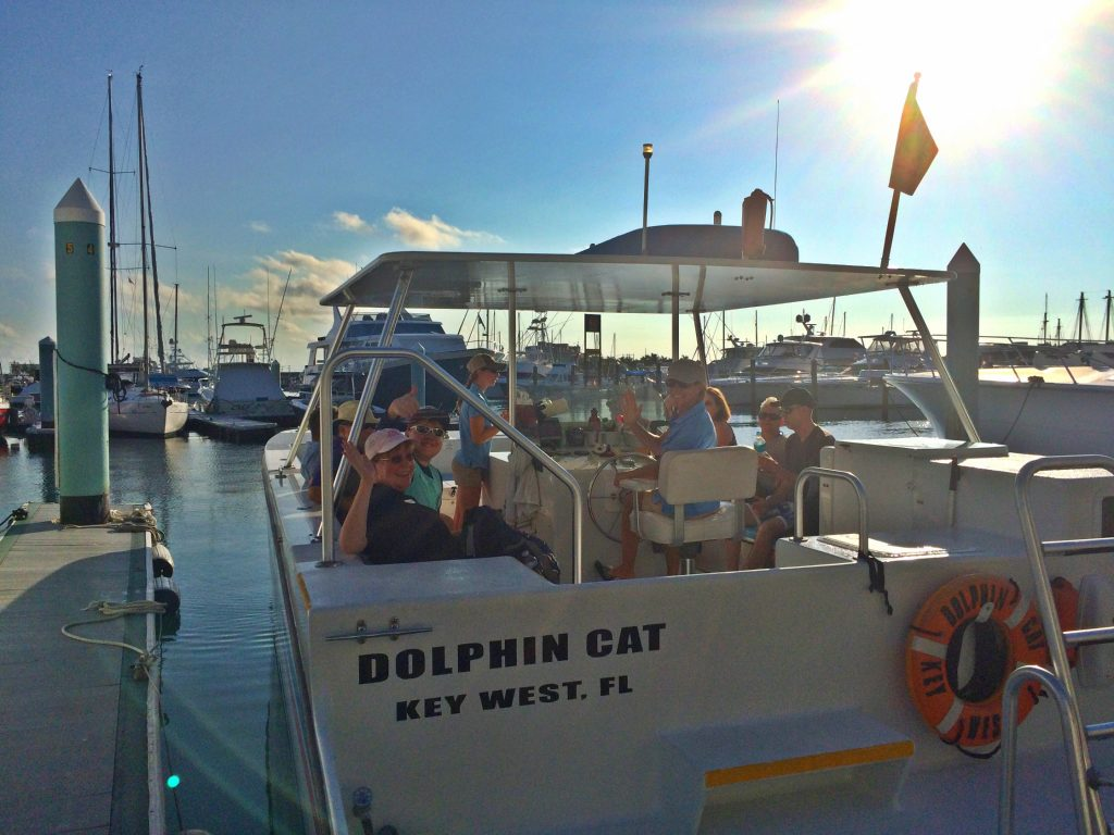 Key West Dolphin Watch Snorkel Tour