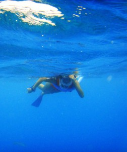 Swimmer snorkeling at the surface of the water