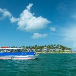 Fury catamaran boat sailing the waters of Key West with guests standing and looking at water and in the background, an island with Key West homes and may palm trees