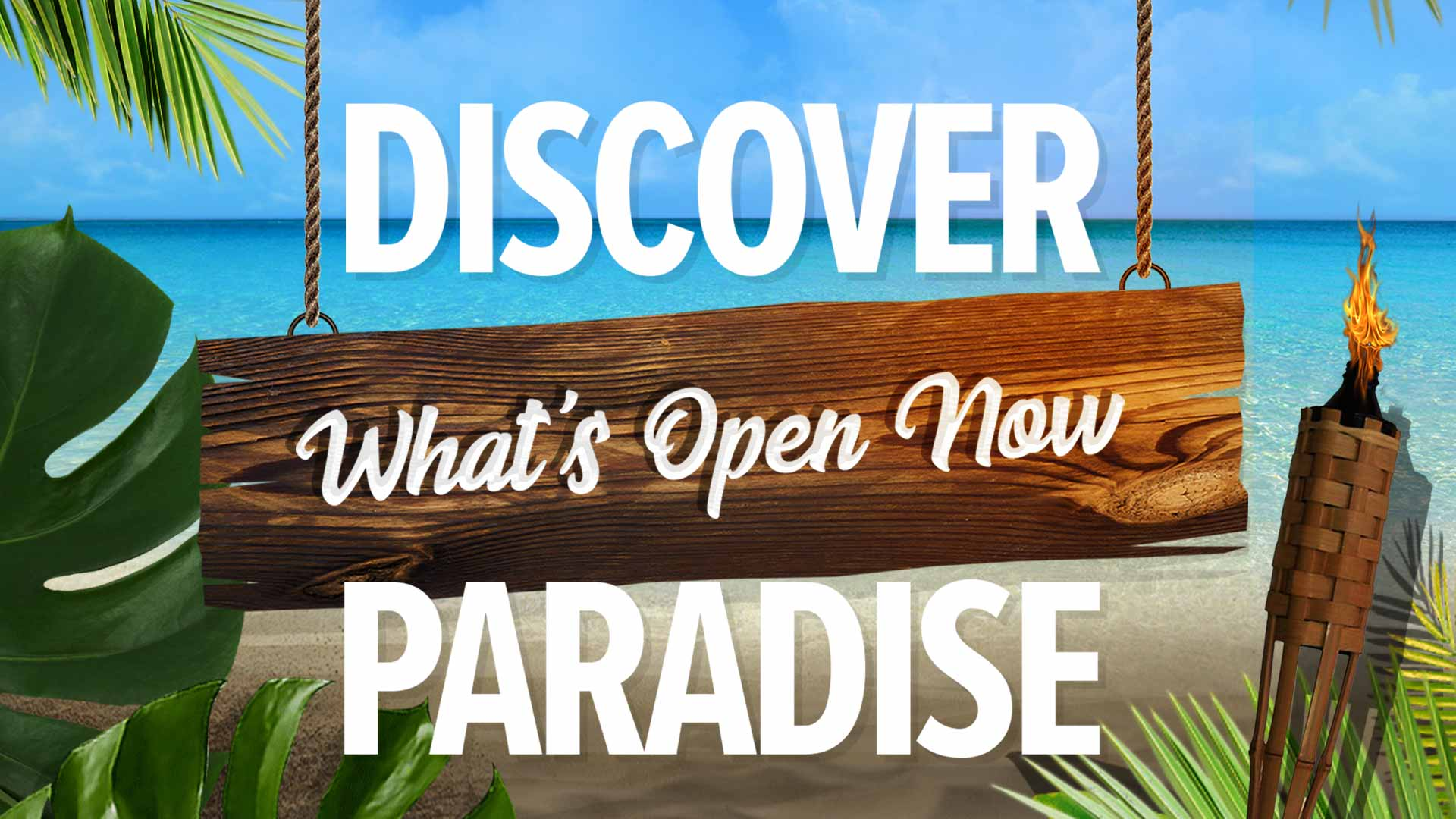 discover whats open now in paradise