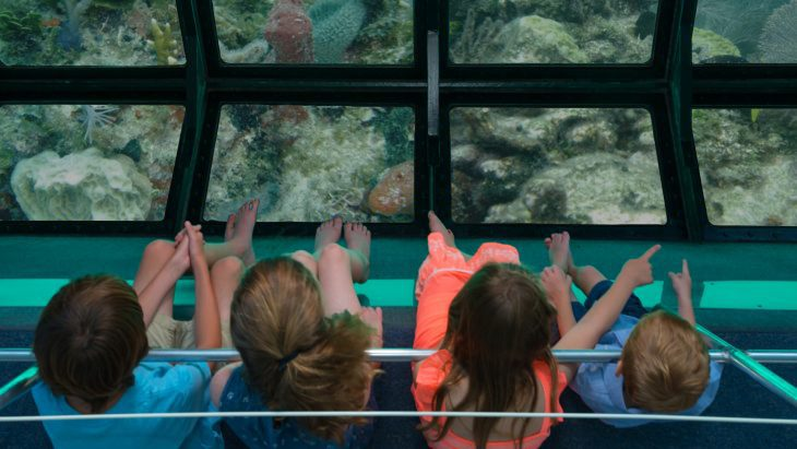 View from above of four kids sitting with their feet dangling and looking at the glass-bottom of a catamaran where they can see the ocean reef