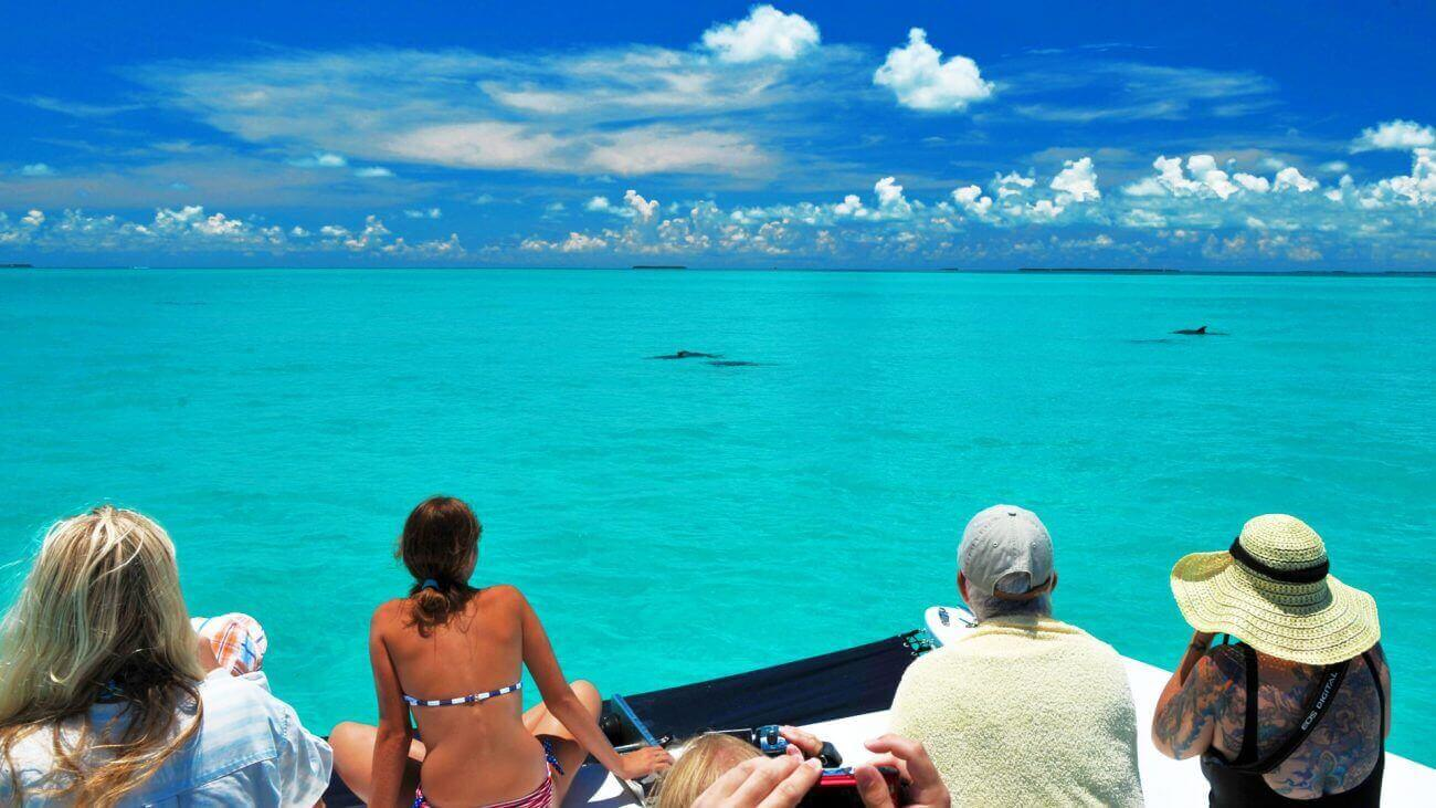 Image of people watching dolphins in Key West