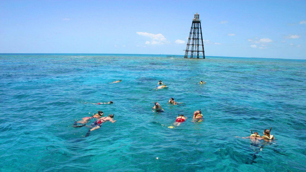 Image of people snorkeling on the Fury Double Dip Snorkel Tour