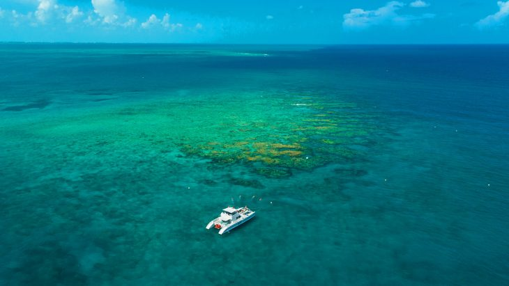 aerial view of the power catamaran out at a reef in key west florida