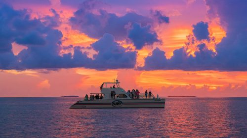 fury reef express power catamaran at sunset with pink and purple skies