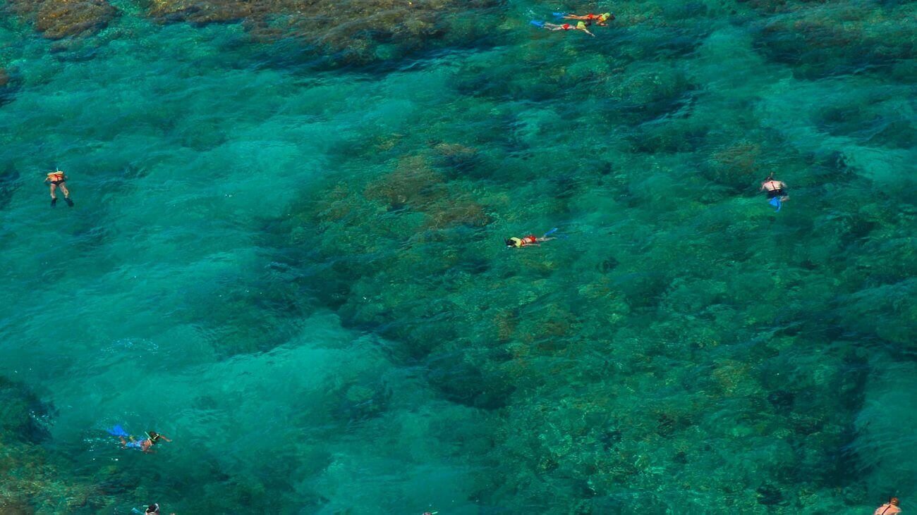 Aerial View of people snorkeling the coral reef in Key West