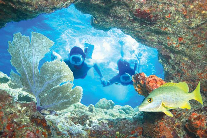 couple snorkeling in key west waters