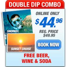 double dip combo