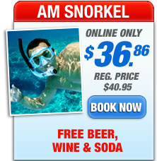 fury snorkel trips