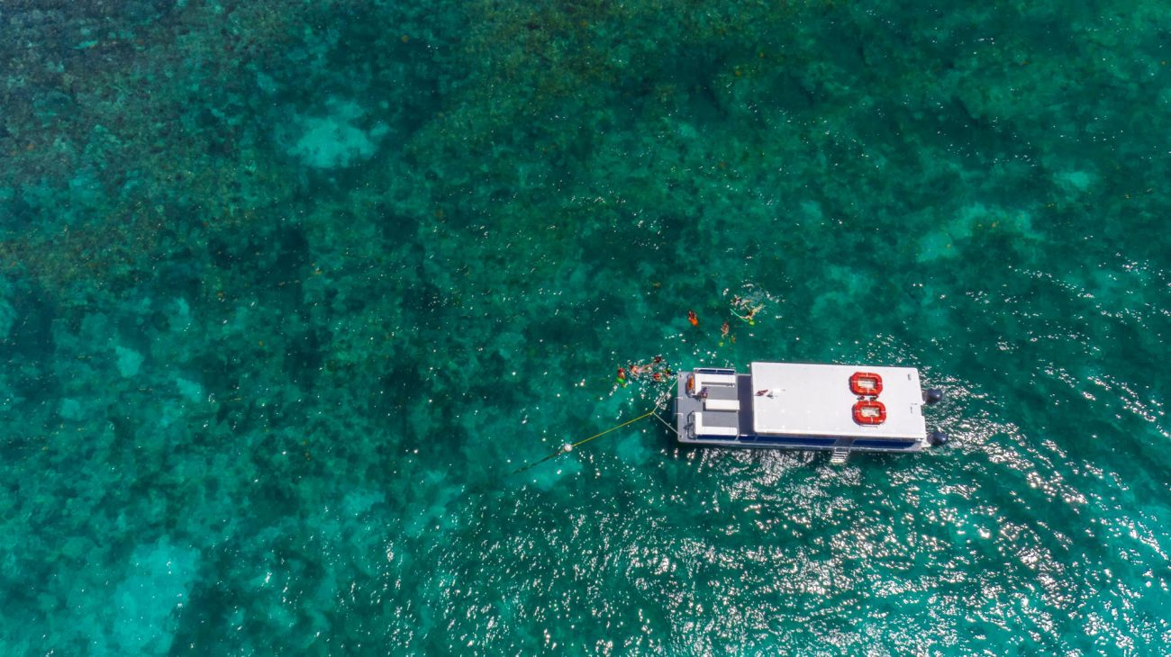 Aerial view of a Fury catamaran surrounded by the ocean and reef. The catamaran is attached to a buoy and around catamaran are guests snorkeling.