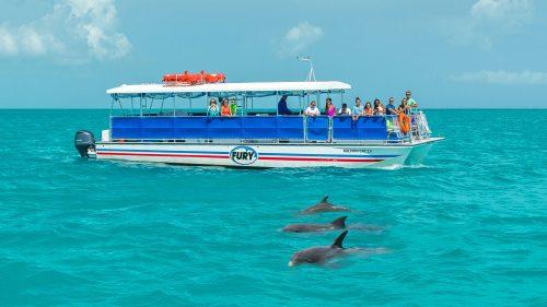 Fury Corinthian Boat on Dolphin Watch Trip