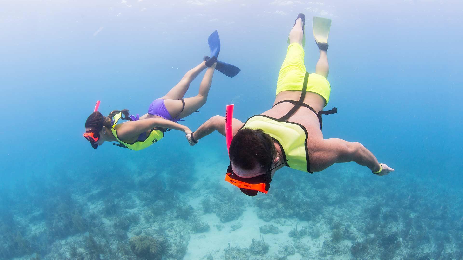Image of Snorkelers in the ocean
