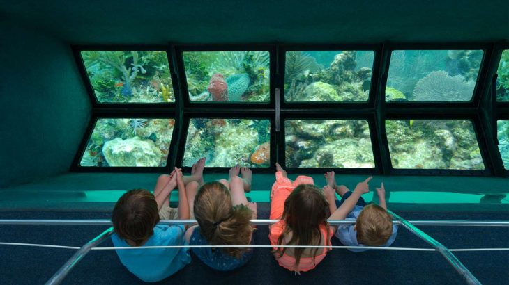 children on glass bottom boat pointing at marine life