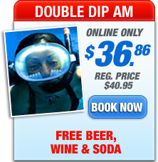double dip am trip