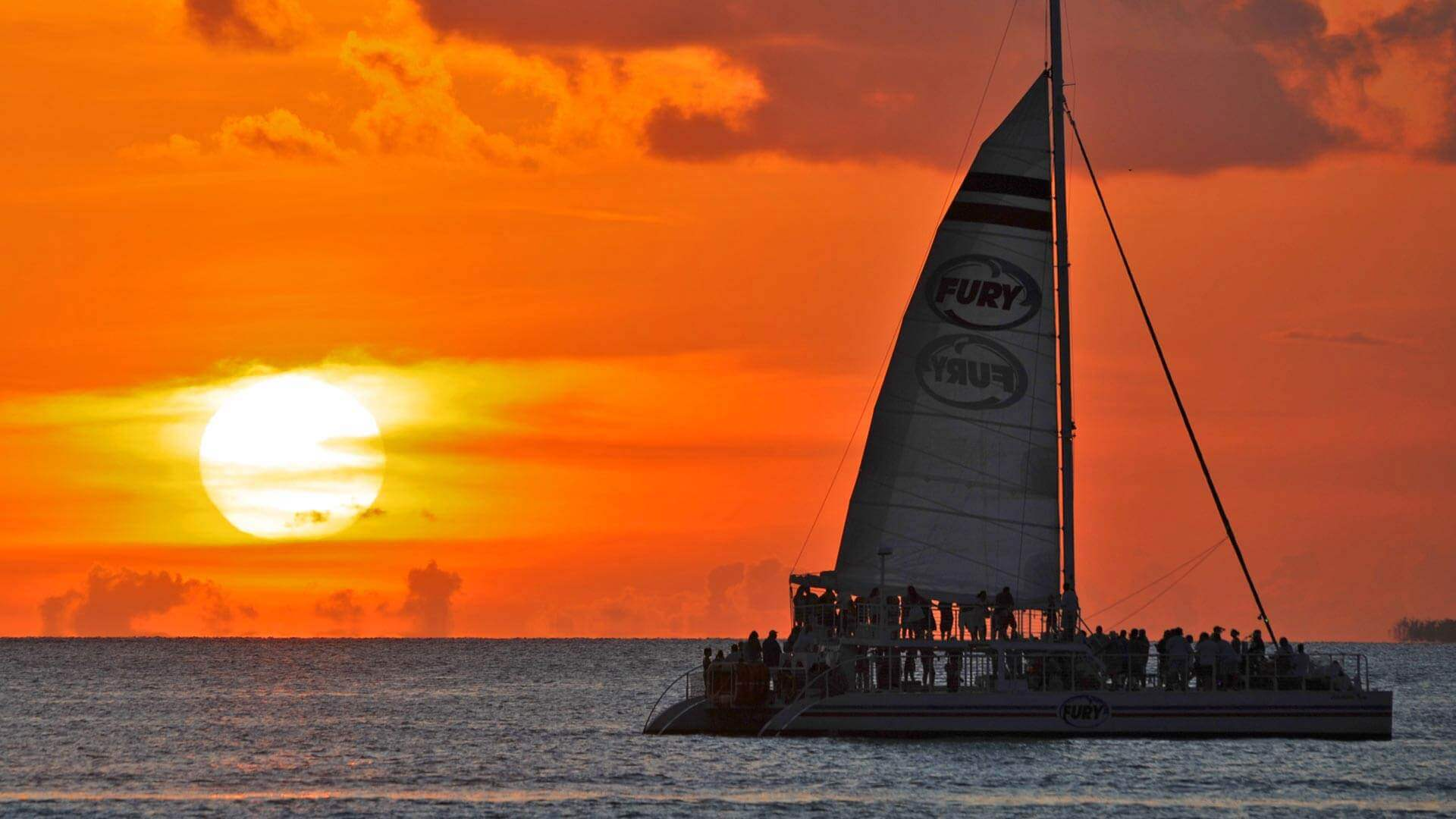 PARROTHEADS LIVE MUSIC SUNSET SAIL