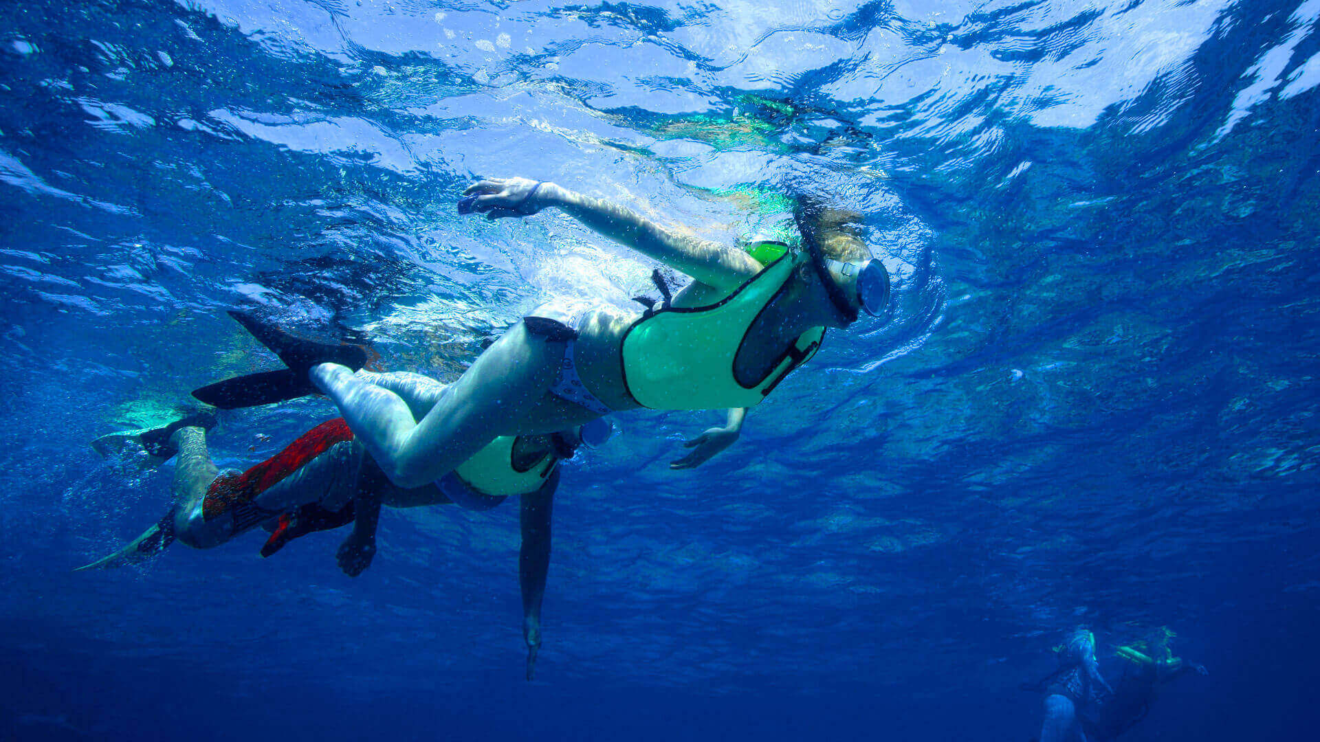 Image of couple snorkeling on the Fury Rum and Reggae Snorkel Tour