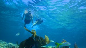 Image of couple on the Fury Afternoon Snorkel Tour