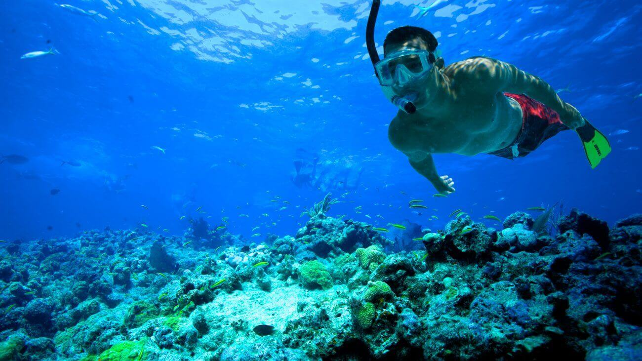 Image of man snorkeling the Key West waters
