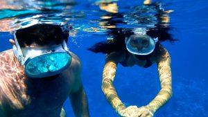 two-stop-snorkel-trip